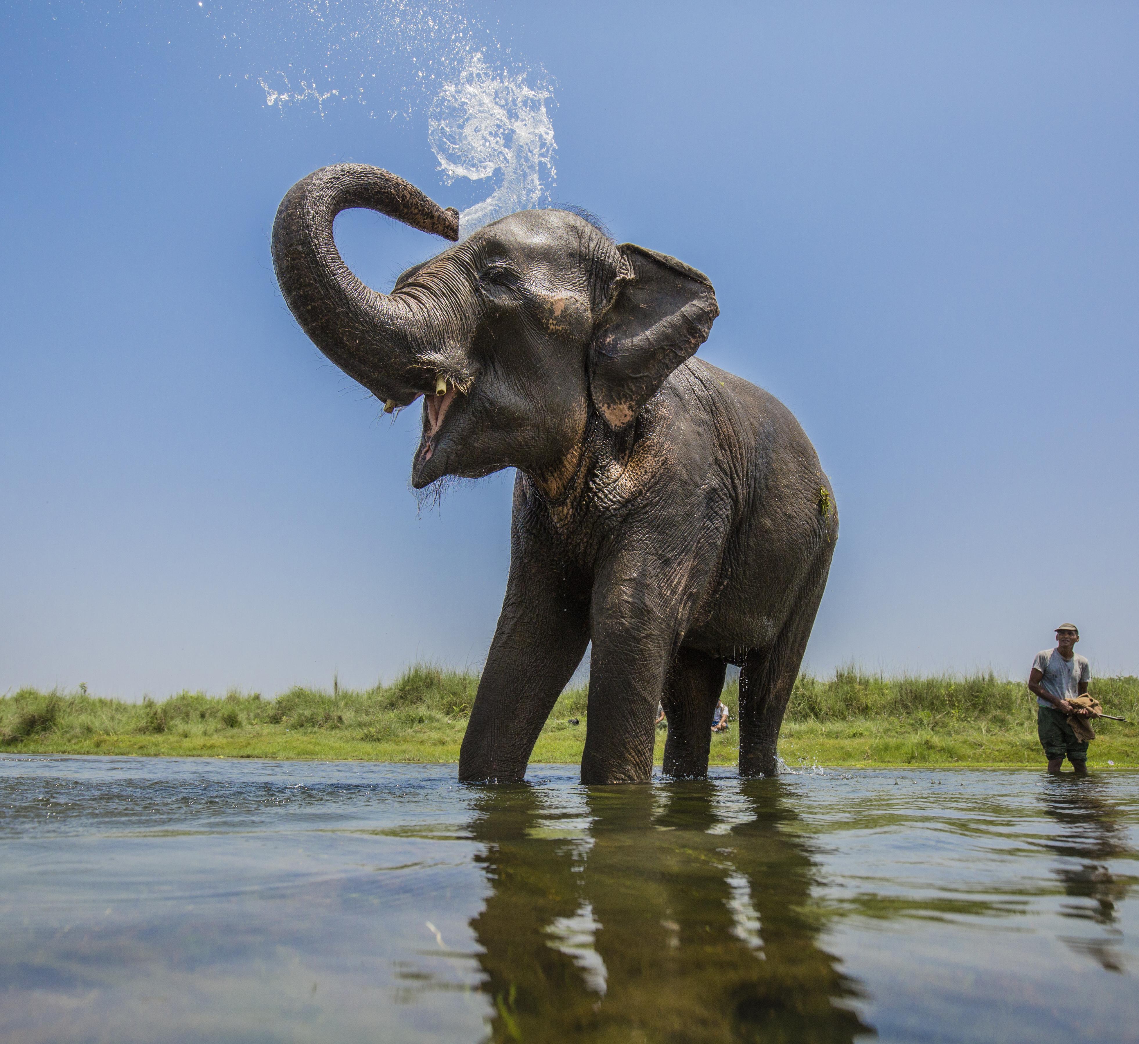 20150423_5DM3_WWF_NEPAL_2746